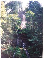 1993-06-10_10