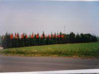 1993-06-10_3